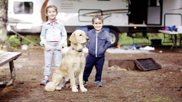 preschooler children rv camping with dog - camper van stock videos & royalty-free footage