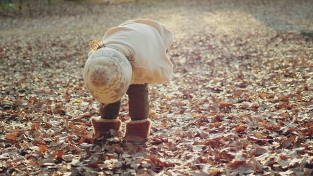 preschoolers exploring the woods - baby boys stock videos & royalty-free footage