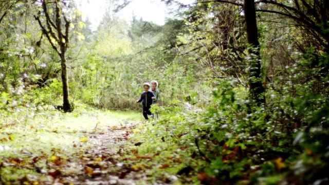 vídeos de stock, filmes e b-roll de crianças pequenas explorar a floresta - brincadeira de pegar