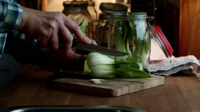 preserving organic bok choy in jars - preserved in oil stock videos and b-roll footage