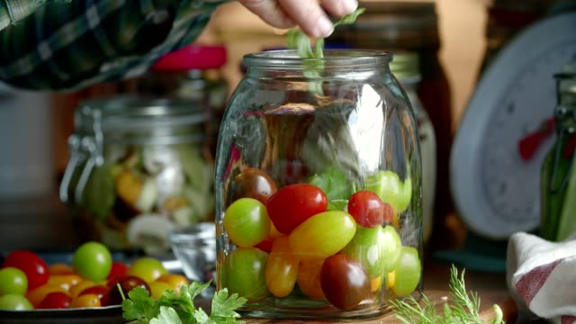 preserving organic mixed colored cherry tomatoes in jars - lactose fermentation stock videos and b-roll footage