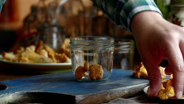 preserving organic mushrooms in jars - lactose fermentation stock videos and b-roll footage
