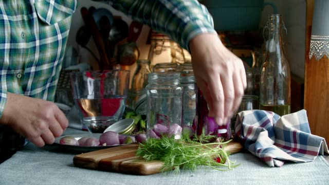 preserving organic red onions and red spring onions in jars - lactose fermentation stock videos and b-roll footage