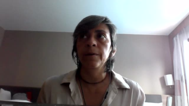 President Bolsonaro blames environmental groups for Amazon wildfires Unidentified Location INT Dr Ane Alencar 2 WAY interview via internet SOT