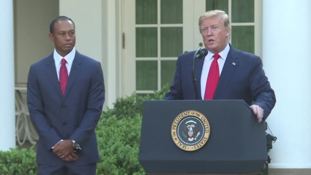 us president donald trump an avid golfer and the owner of several golf courses rewards tiger woods with the presidential medal of freedom the... - tiger woods stock videos & royalty-free footage