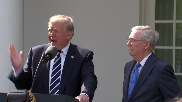 president donald trump gives speech with senate majority leader mitch mcconnell in the rose garden. trump says that he has a great relationship with... - disegno di legge video stock e b–roll