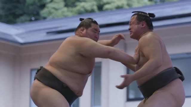 us president donald trump will be invited to watch sumo wrestling this weekend during his upcoming visit to japan and will present a custom made... - us president stock videos & royalty-free footage