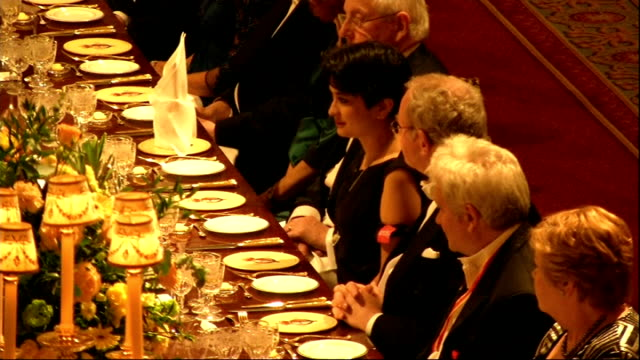president of ireland visit: state banquet; queen speech sot - on history and future of relations queen toasting and guests standing as irish national... - state dinner stock videos & royalty-free footage