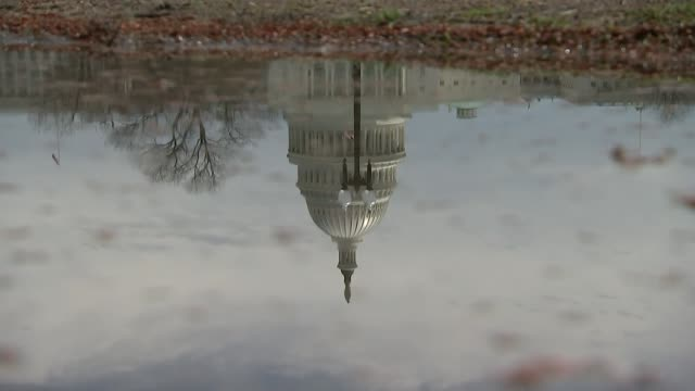 vídeos de stock e filmes b-roll de president trump declares national emergency to build border wall usa washington dc ext reflection of capitol dome seen in puddle statue of freedom... - capitol hill