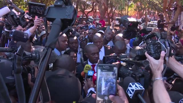 stockvideo's en b-roll-footage met presidential hopeful nelson chamisa casts his vote in the first election since authoritarian leader robert mugabe's fall claiming victory is certain... - stemmen