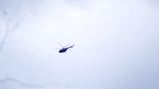 press helicopter flying above treetops - rescue stock videos & royalty-free footage