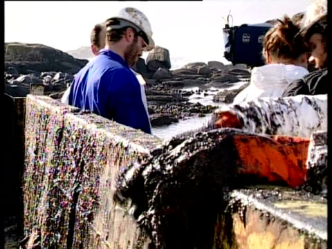 prestige tanker oil spill, 2002: cleaner scrapes oil from gloves into skip, northwest coast of spain. - oil spill stock videos & royalty-free footage
