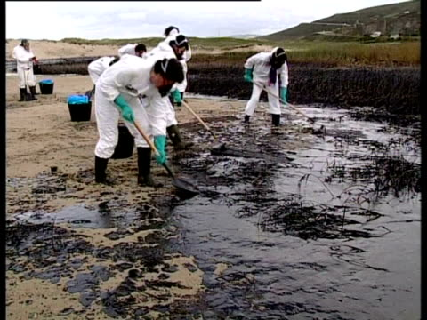 prestige tanker oil spill, 2002: clean-up team shovelling oil off beach, northwest coast of spain. - oil spill stock videos & royalty-free footage