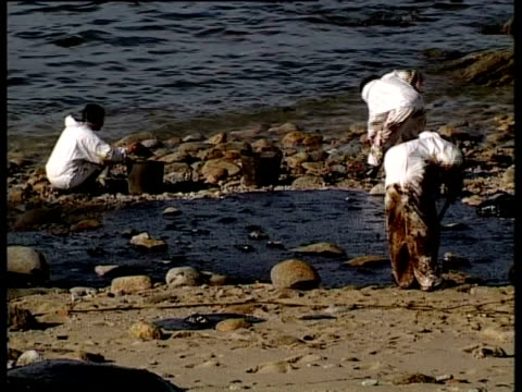 prestige tanker oil spill, 2002: clean-up team shovelling up oil on beach, northwest coast of spain. - oil spill stock videos & royalty-free footage