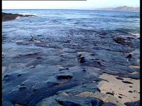 vidéos et rushes de prestige tanker oil spill, 2002: oily waves break on oil covered beach, northwest coast of spain, - marée noire