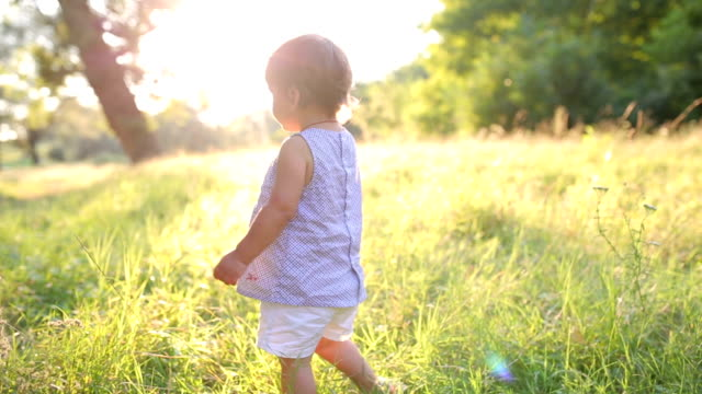 a pretty little girl out in a meadow. - primi passi video stock e b–roll