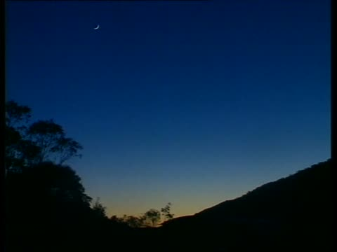 vs pretty sunrise shots dawn seen over ridge and eucalyptus trees - tropical tree stock videos & royalty-free footage