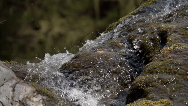 pretty waterfall in an ancient woodland in rural wales - mid wales stock videos & royalty-free footage