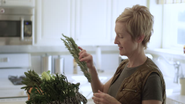 pretty woman bringing in the groceries - nutritionist stock videos and b-roll footage