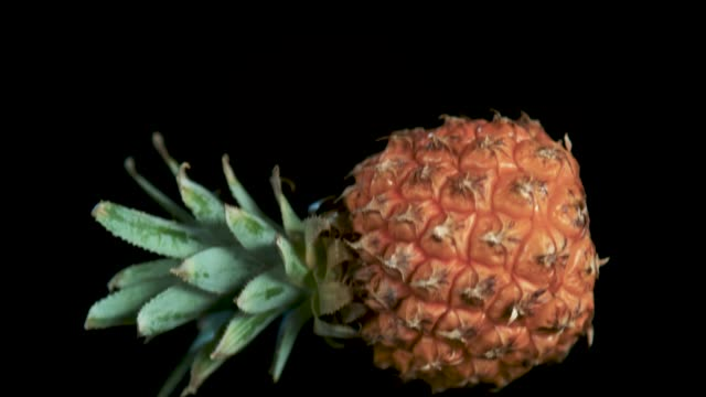 prickly on the outside, sweet on the inside - pineapple stock videos & royalty-free footage