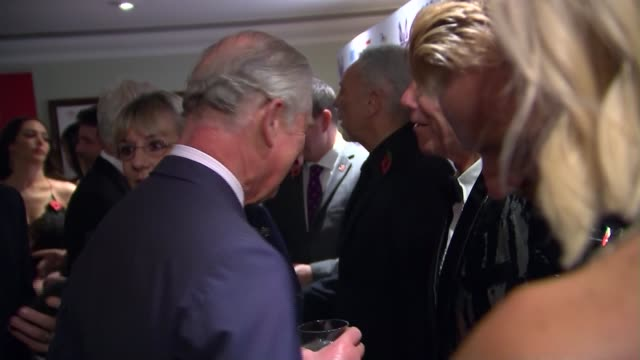 prince charles meets guests prince charles meeting louis tomlinson tom jones and cliff richards / geri halliwell and emma bunton / fearne cotton... - fearne cotton stock videos & royalty-free footage