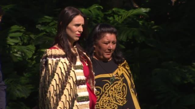 prime minister jacinda ardern receiving a maori welcome at government house - feierliche veranstaltung stock-videos und b-roll-filmmaterial
