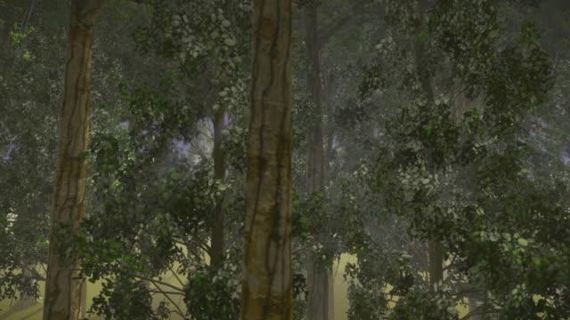 Urwaldgewächse Regenwald