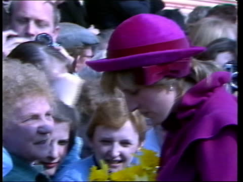 prince and princess of wales visit liverpool: official opening of hundred harmonies pagoda; england: liverpool: chinatown: hundred harmonies pagoda:... - princess stock videos & royalty-free footage