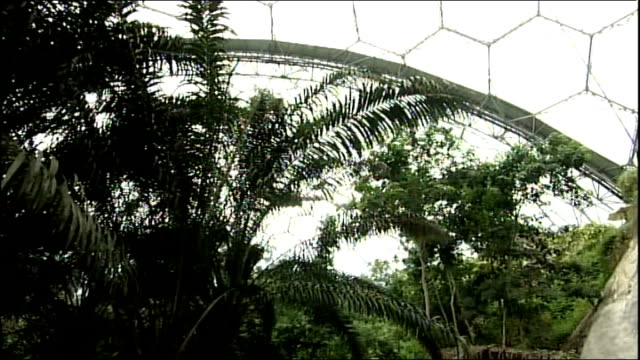 vídeos de stock e filmes b-roll de prince charles and camilla duchess of cornwall visit eden project england cornwall st austell eden project int prince charles prince of wales towards... - st austell