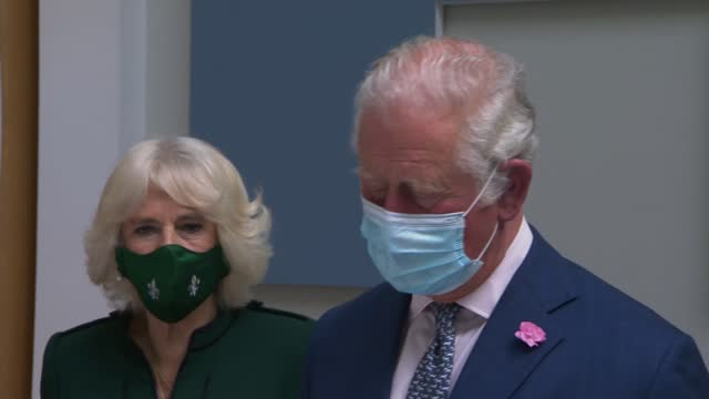 prince charles and camilla visit education authority headquarters in belfast; northern ireland: belfast: education authority northern ireland: int... - day stock videos & royalty-free footage