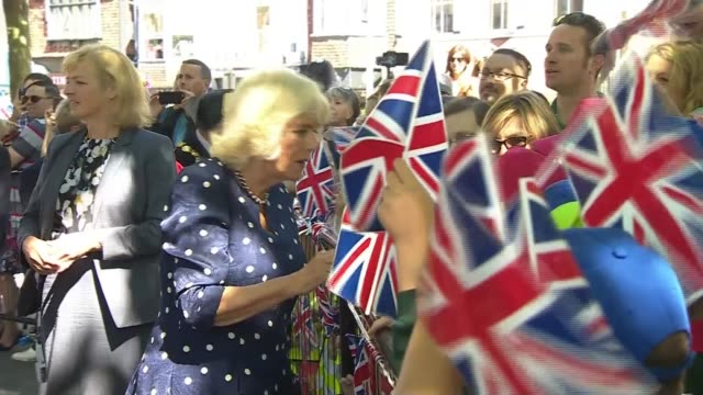 prince charles and camilla visit salisbury: guildhall arrival and walkabout; uk, salisbury: prince charles, prince of wales, and camilla, duchess of... - prince stock videos & royalty-free footage