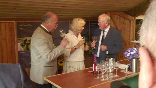 prince charles and camilla visit to isles of scilly; camilla in vineyard chatting to family int camilla wine tasting ext general views of vineyard... - isles of scilly stock videos & royalty-free footage