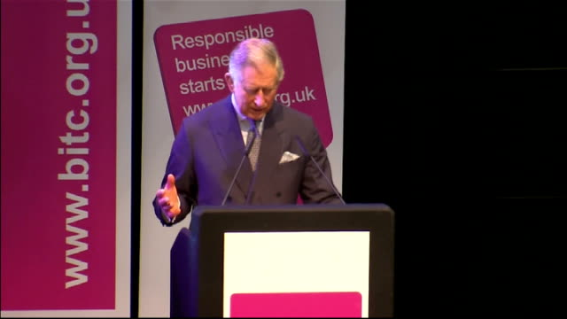 prince charles and david cameron speeches at the communities summit prince charles speech sot vision we want a nationwide network we can build a... - nackenrolle kopfkissen stock-videos und b-roll-filmmaterial
