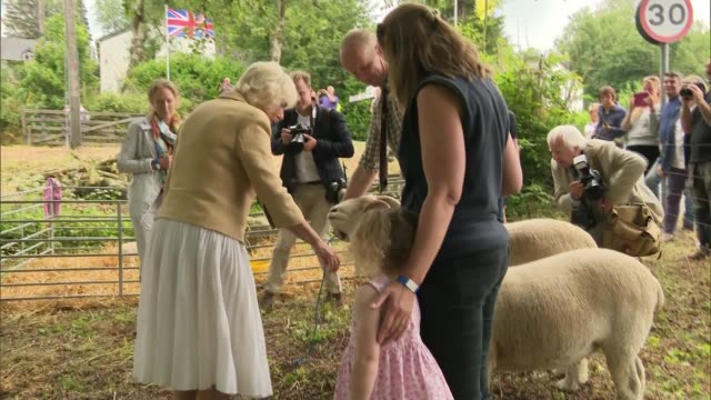 prince charles and duchess of cornwall attend exmoor national park picnic; england: devon: exmoor national park: ext camilla, duchess of cornwall... - exmoor national park stock videos & royalty-free footage