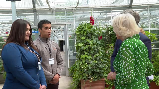 prince charles and duchess of cornwall thank royal parks staff during hyde park visit; england: london: hyde park: ext prince charles, prince of... - loyd grossman点の映像素材/bロール