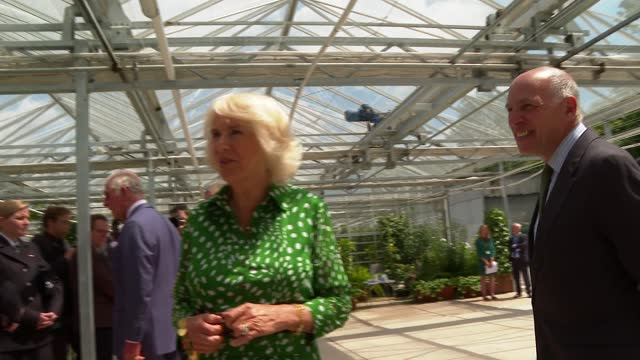 prince charles and duchess of cornwall thank royal parks staff during hyde park visit; england: london: hyde park: ext further shots of prince... - loyd grossman点の映像素材/bロール