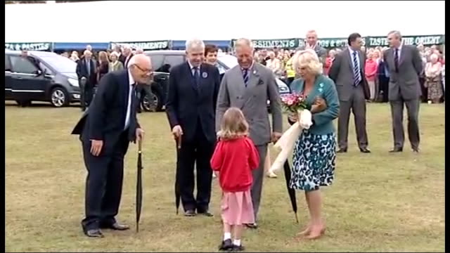 prince charles and duchess of cornwall visit sandringham flower show prince charles and camilla duchess of cornwall along in horse drawn cart /... - meet and greet stock videos and b-roll footage