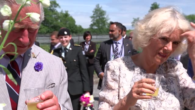 prince charles and duchess of cornwall visit visit to ontario prince edward county wellington int camilla tasting cake at stall in covered area at... - camilla duchess of cornwall stock videos and b-roll footage