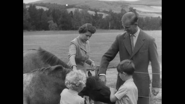 prince charles and princess anne feed carrots to horses as queen elizabeth ii and prince philip watch during a family holiday at balmoral; 1955. - concepts & topics stock videos & royalty-free footage