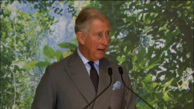 prince charles first speech as the new president of the worldwide wildlife fund; england: london: int prince charles, prince of wales, speech sot -... - judge entertainment stock videos & royalty-free footage
