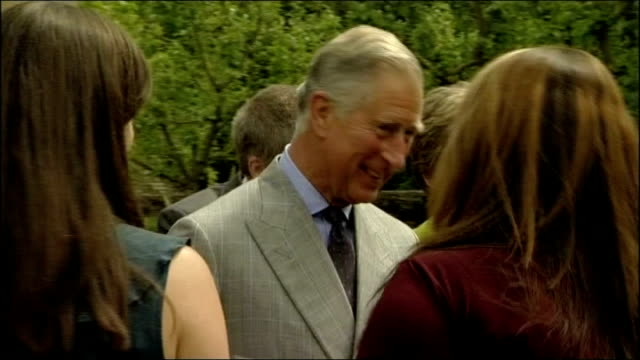 prince charles hosts reception and gives speech england gloucestershire doughton highgrove house photography *** prince charles prince of wales... - maureen lipman stock videos and b-roll footage