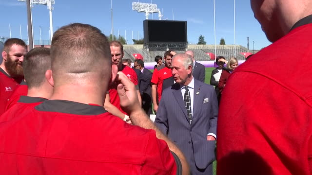 prince charles meets the welsh rugby team ahead of their semi final world cup match in japan - semifinal round stock videos & royalty-free footage