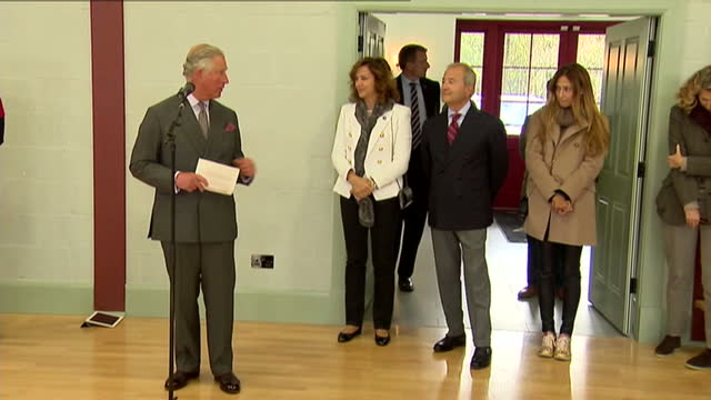 prince charles opens sports centre in ayr. shows interior shots prince charles thanking people involved in the sports facility & preparing for... - ayr stock videos & royalty-free footage