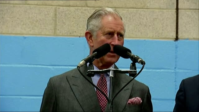 prince charles opens stroud festival of manufacturing and engineering 'festomane' backdrop / prince charles prince of wales speech sot / charles... - award ribbon stock videos and b-roll footage