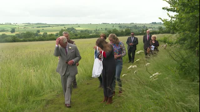prince charles opens the farmed farming and food educational centre in oxfordshire; england: oxfordshire: chipping norton: ext prince charles, prince... - meadow stock videos & royalty-free footage