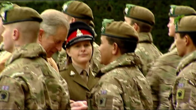 prince charles presents medals to soldiers returning from afghanistan close shot of french horn pull out to band playing more shots of charles... - french horn stock videos and b-roll footage