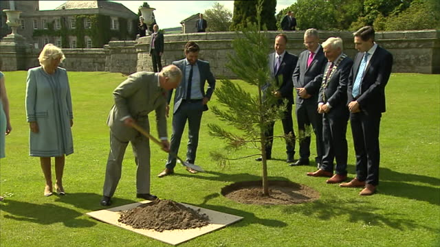 prince charles, prince of wales plants a tree as camilla, duchess of cornwall looks on, during visit at the powerscourt house and gardens during... - prince of wales stock videos & royalty-free footage