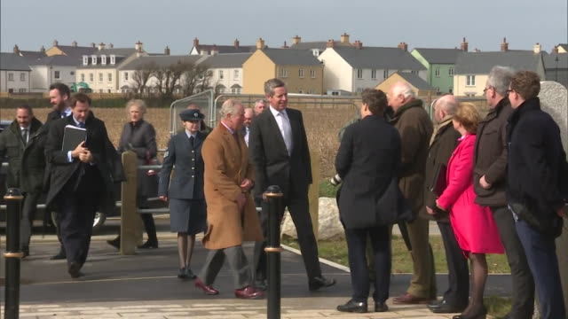 prince charles shaking hands with people on official to newquay, he has since been diagnosed with coronavirus - shaking stock videos & royalty-free footage