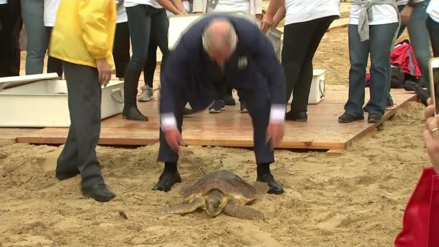 Prince Charles speaks out about the threat to the world's oceans EXT Prince Charles Prince of Wales and man releasing turtle on beach Prince Charles...
