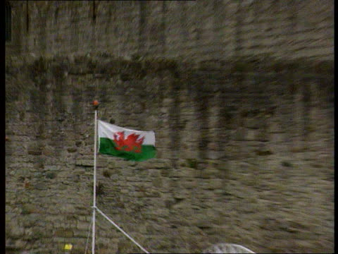 bnat wales caernarvon cms lord snowdon preparing for royal garden party gv grounds of castle man intvwd sot i dont like him cms welsh dragon flag... - flying stock videos & royalty-free footage
